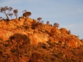 Mt Malcolm  Granite Outcrop